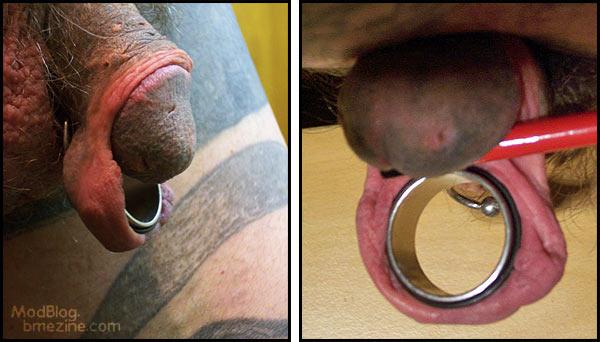 Body modification split penis