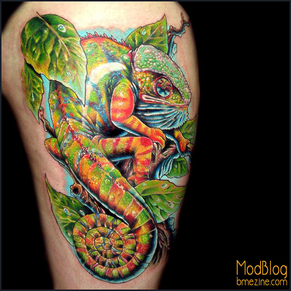 Chameleon Tattoo Finder: Incredible Chameleon Tattoo