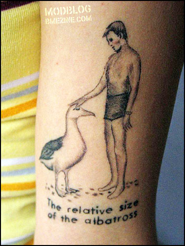 The Relative Size Of The Albatross Bme Tattoo Piercing