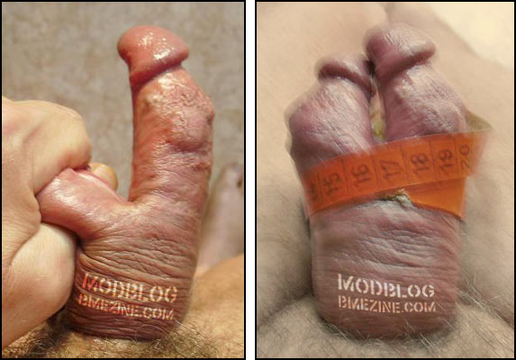 Ebony bbbw mature