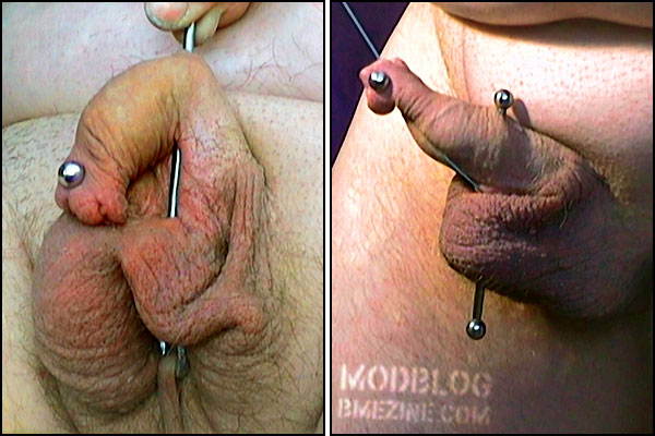 Tattoo extreme penis piercings can you