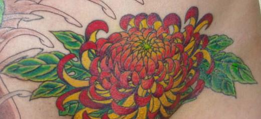 re-flowering