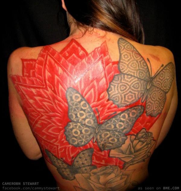 cammy-butterflies