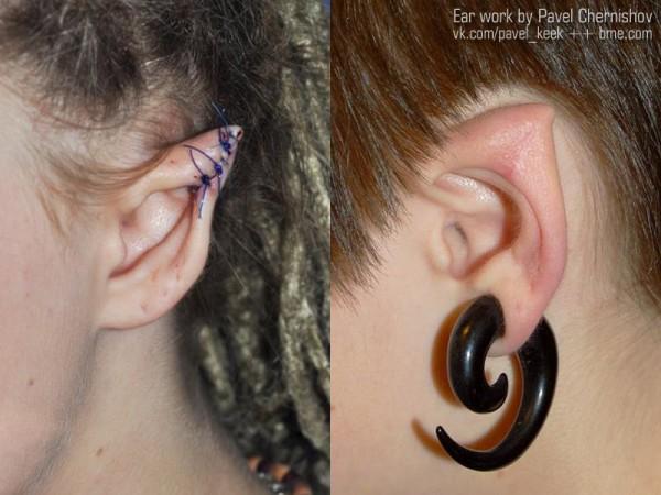 pavel-ears-1