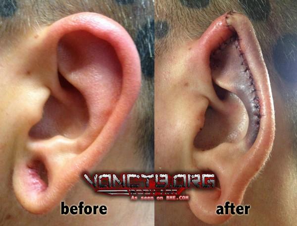 samppa-ear